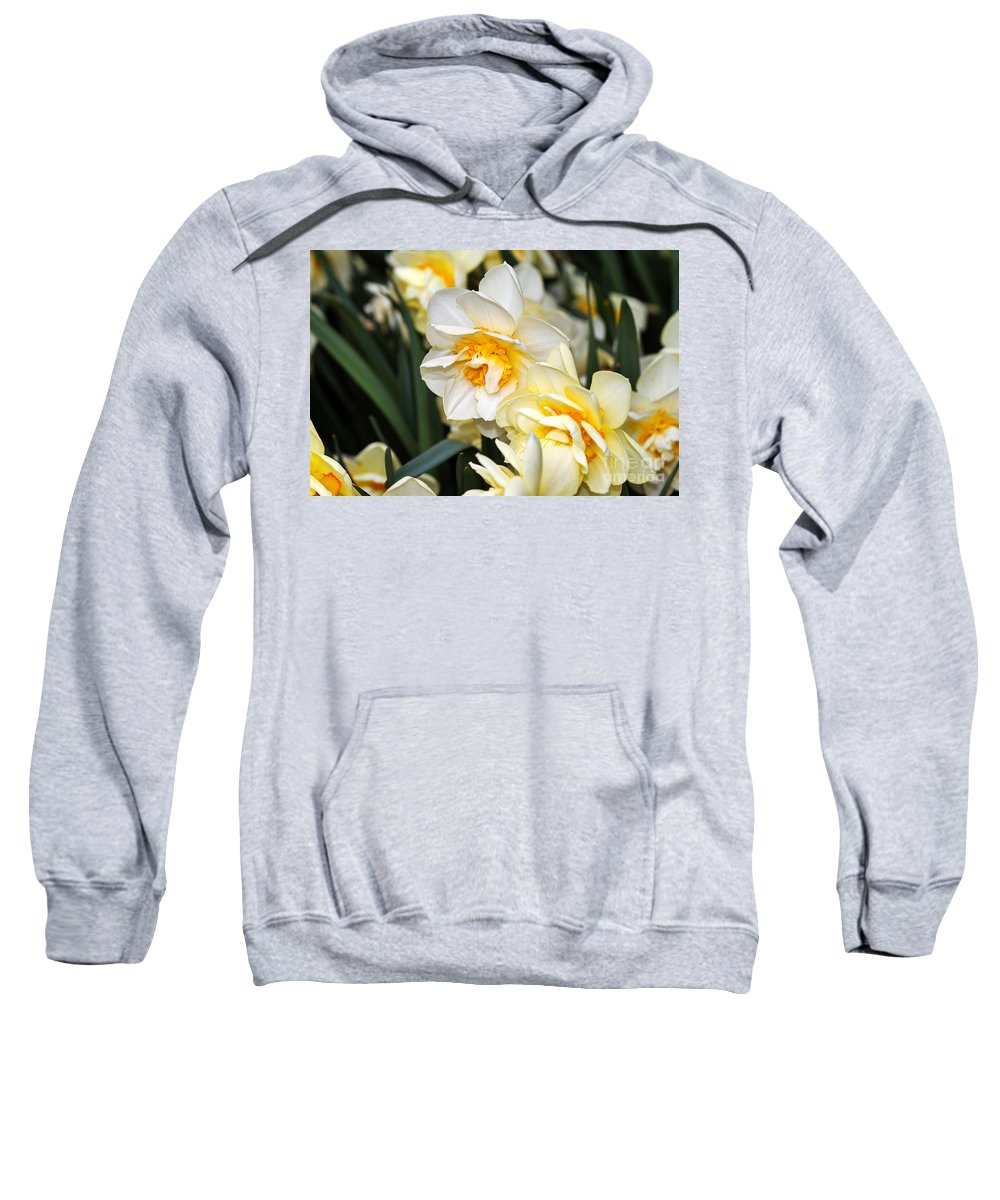 Flower Sweatshirt featuring the photograph Orange And Yellow Double Daffodil by Louise Heusinkveld