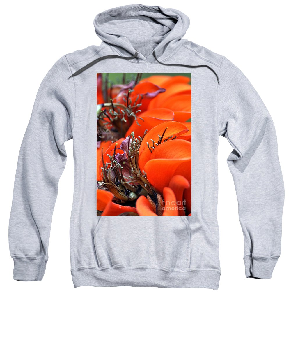 Clay Sweatshirt featuring the photograph Orange by Clayton Bruster