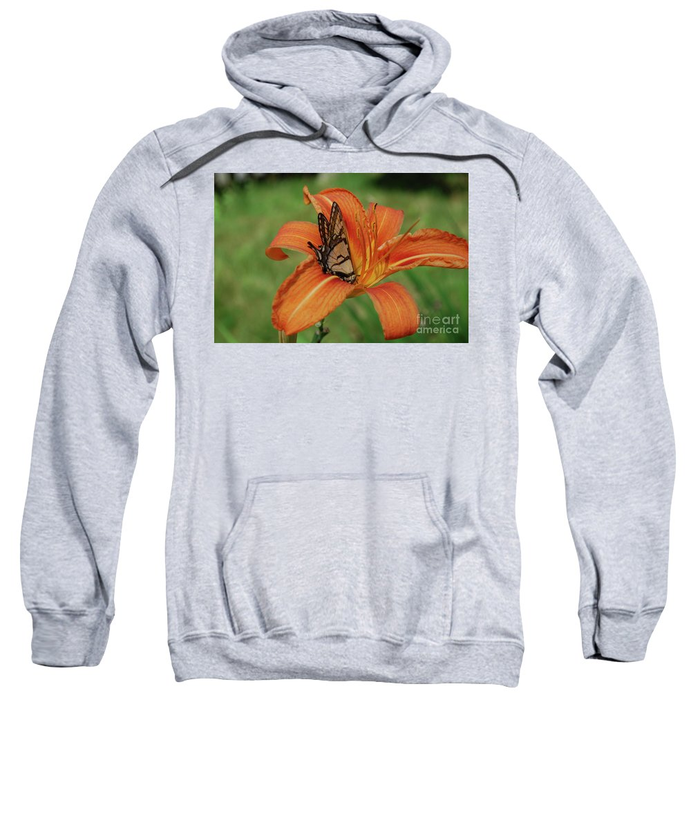 Lily Sweatshirt featuring the photograph Orange Daylily With A Butterfly On It's Petals by DejaVu Designs