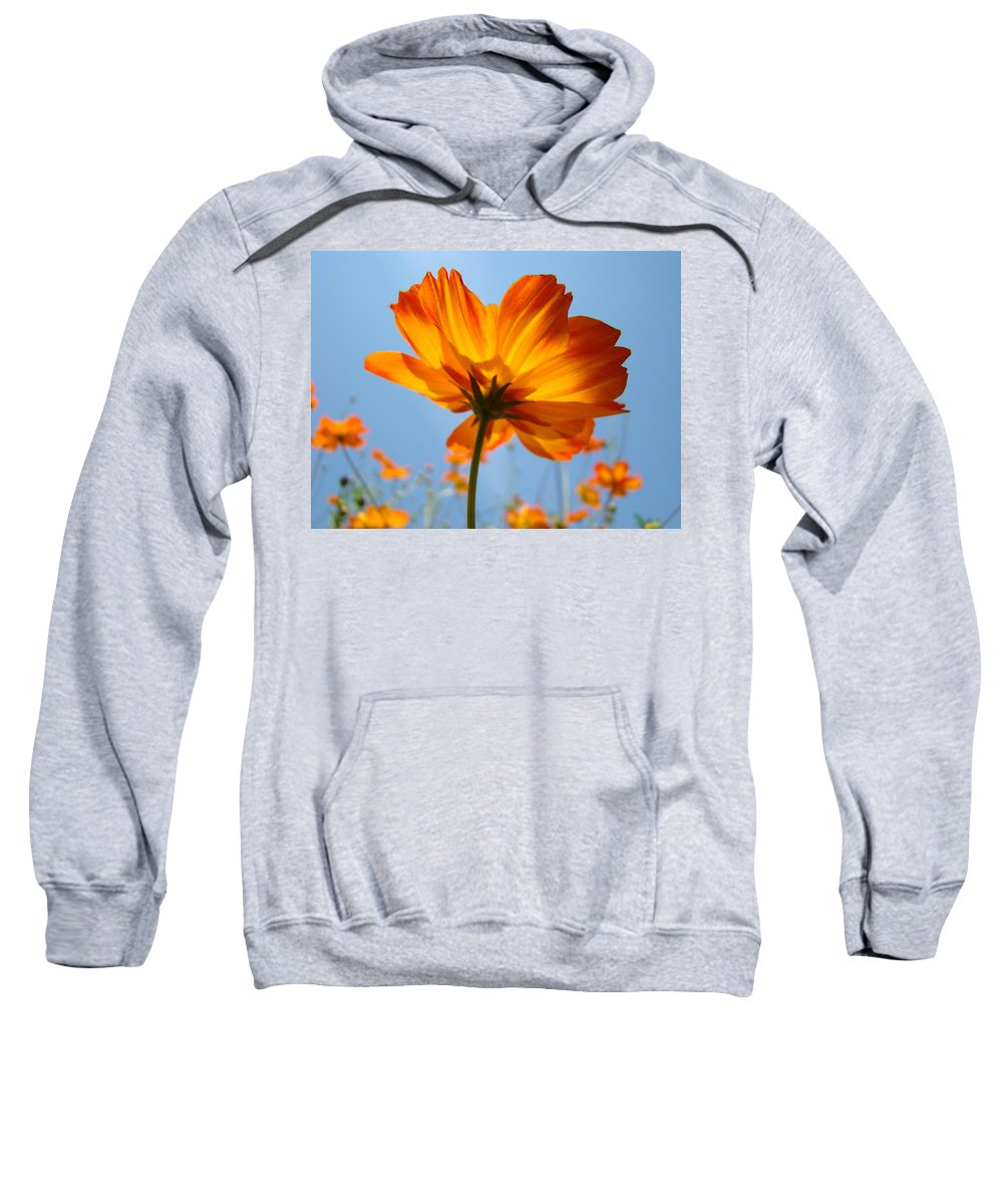 Daisy Sweatshirt featuring the photograph Orange Floral Summer Flower Art Print Daisy Type Blue Sky Baslee Troutman by Baslee Troutman