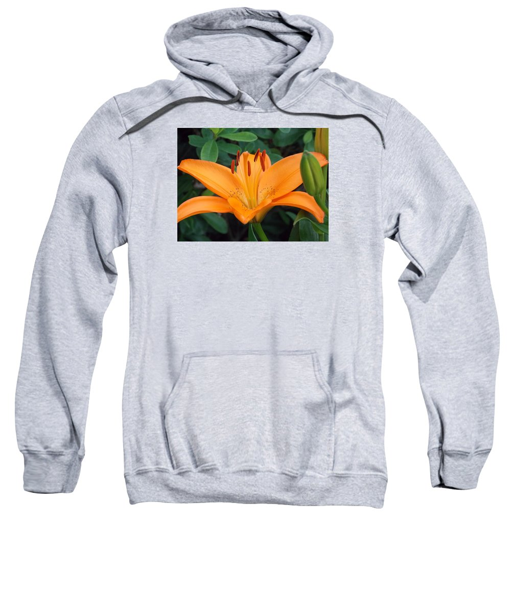 Bridge Of Flowers Sweatshirt featuring the photograph Orange Lily by Catherine Gagne