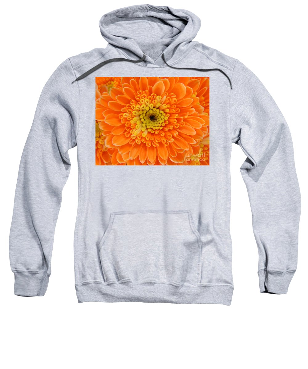 Nature Sweatshirt featuring the photograph Orange Mum In Detail by Lucyna A M Green