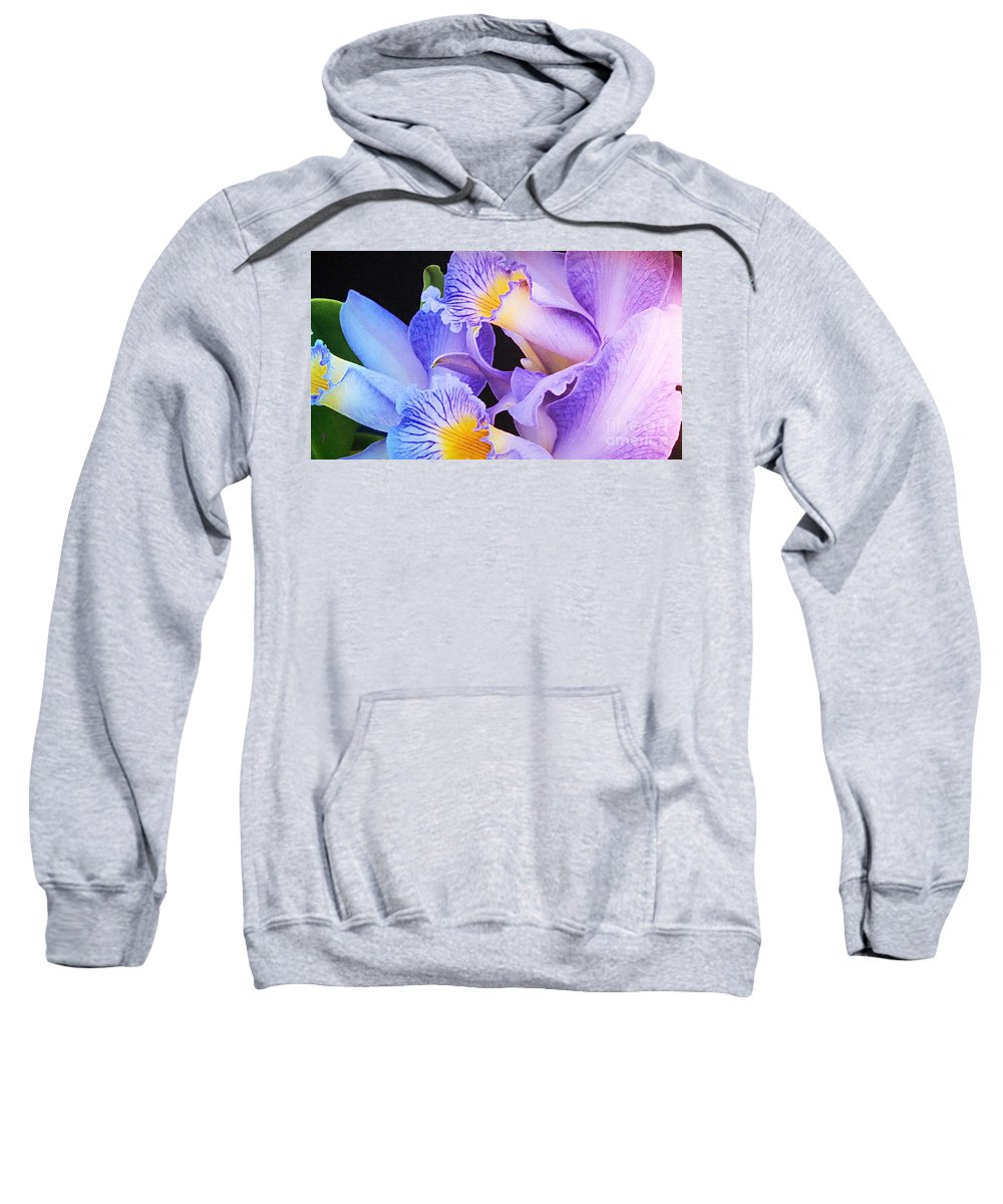 Flowers Sweatshirt featuring the photograph Orchid Bouquet by Cindy Manero