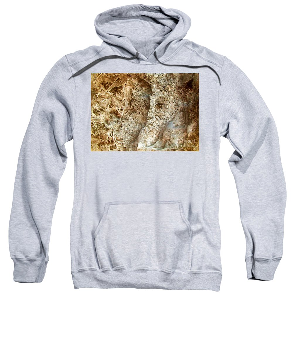 Oriented Strands Sweatshirt featuring the photograph Oriented Strands by Ron Bissett