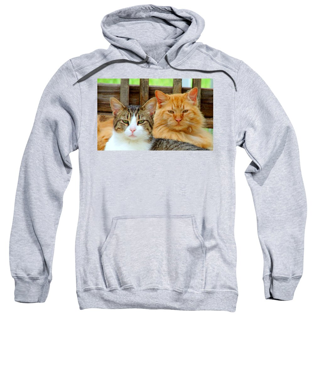 Cats Sweatshirt featuring the photograph Oscar And Red by J R Seymour