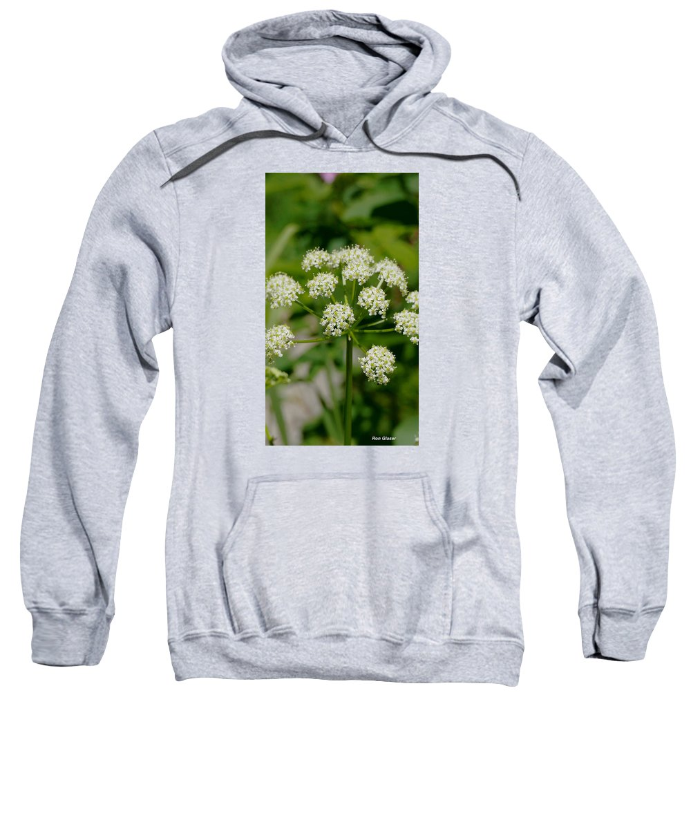Ron Glaser Sweatshirt featuring the photograph Osha Flowers 1 by Ron Glaser