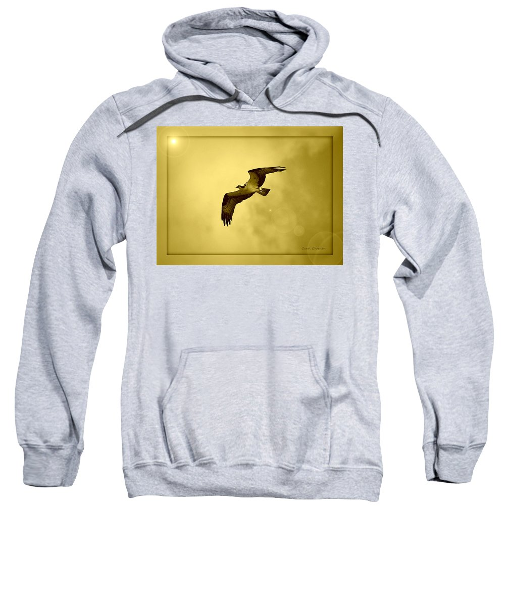 Osprey Sweatshirt featuring the photograph Osprey Soaring Into Golden Sunlight by Carol Groenen