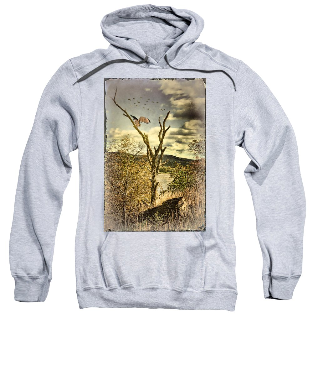 Owl Sweatshirt featuring the photograph Owls Roost by Chris Lord