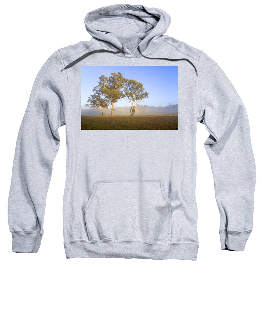 Gum Sweatshirt featuring the photograph Paddock Sunrise by Mike Dawson