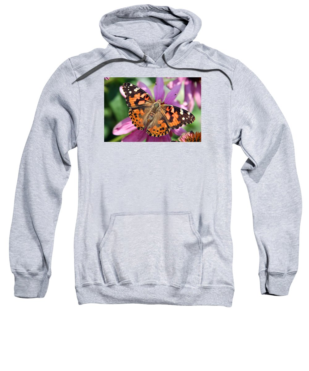 Painted Lady Sweatshirt featuring the photograph Painted Lady Butterfly by Margie Wildblood
