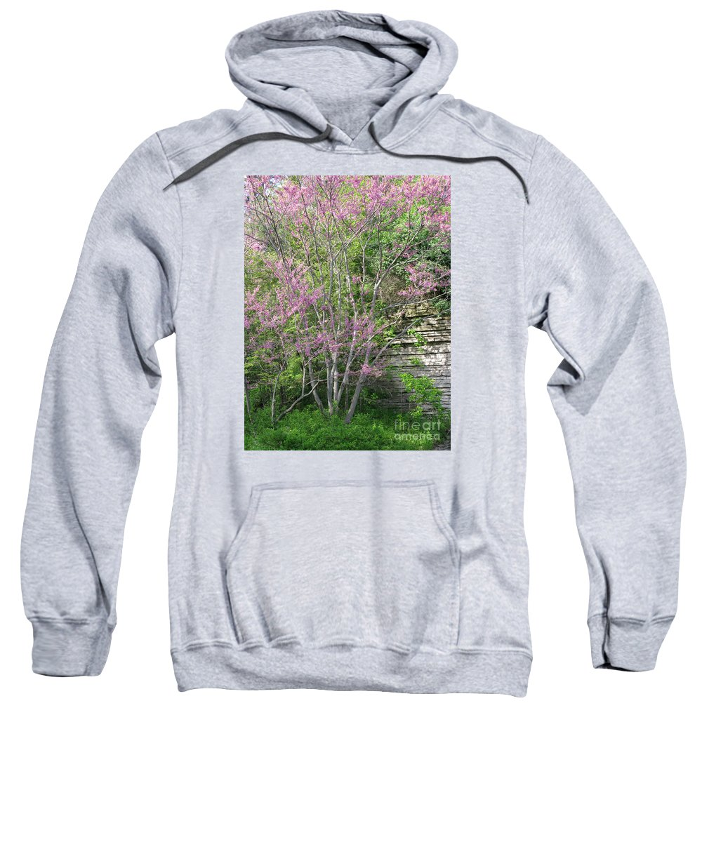 Spring Sweatshirt featuring the photograph Pale Pink Spring by Ann Horn