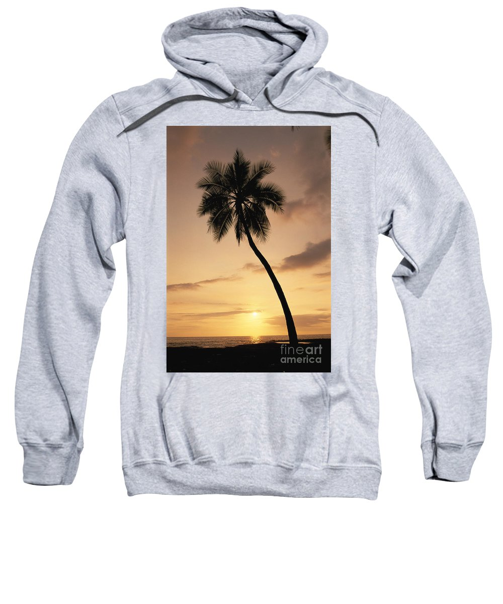 Afternoon Sweatshirt featuring the photograph Palm At Sunset by Greg Vaughn - Printscapes