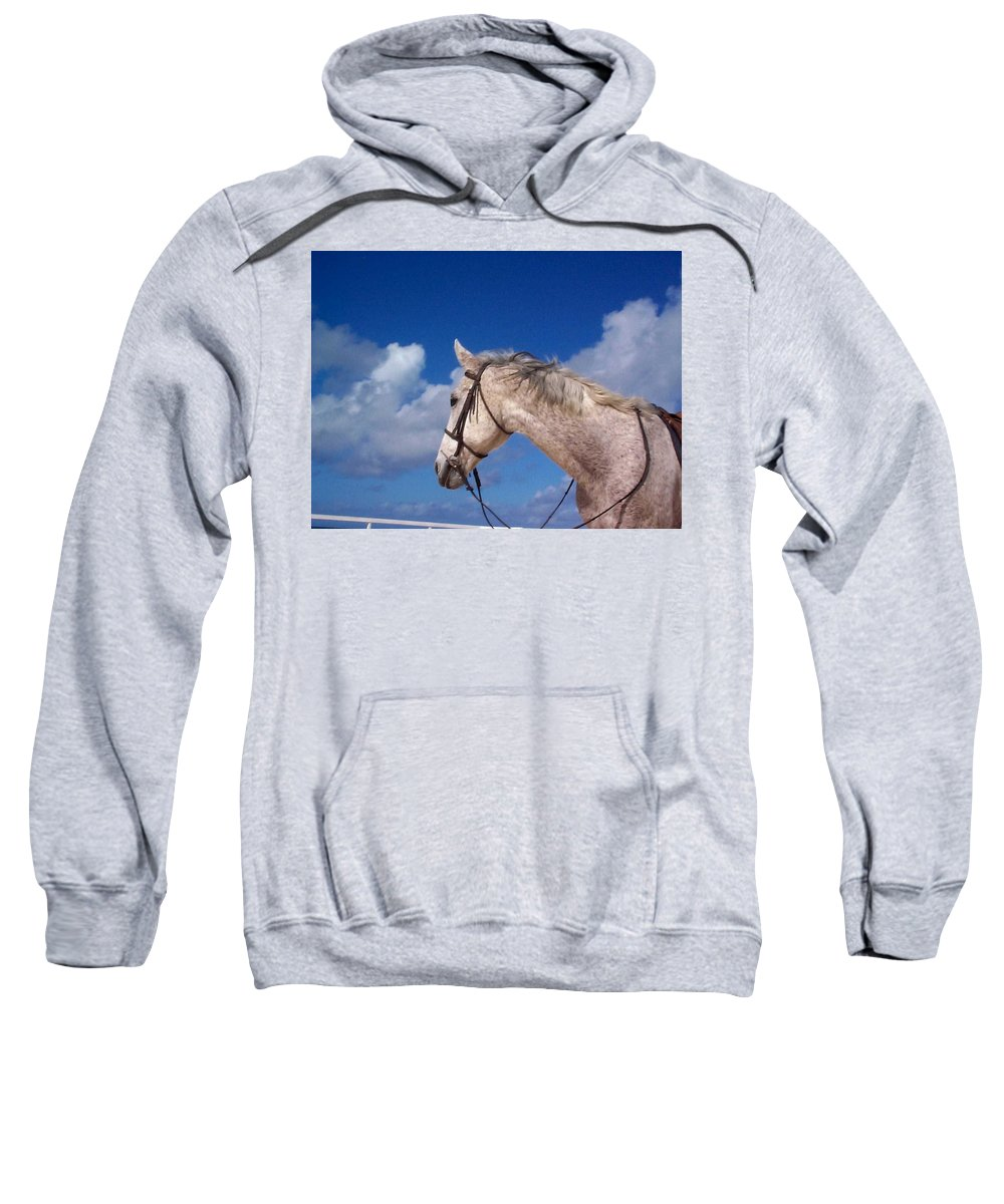 Charity Sweatshirt featuring the photograph Pancho by Mary-Lee Sanders