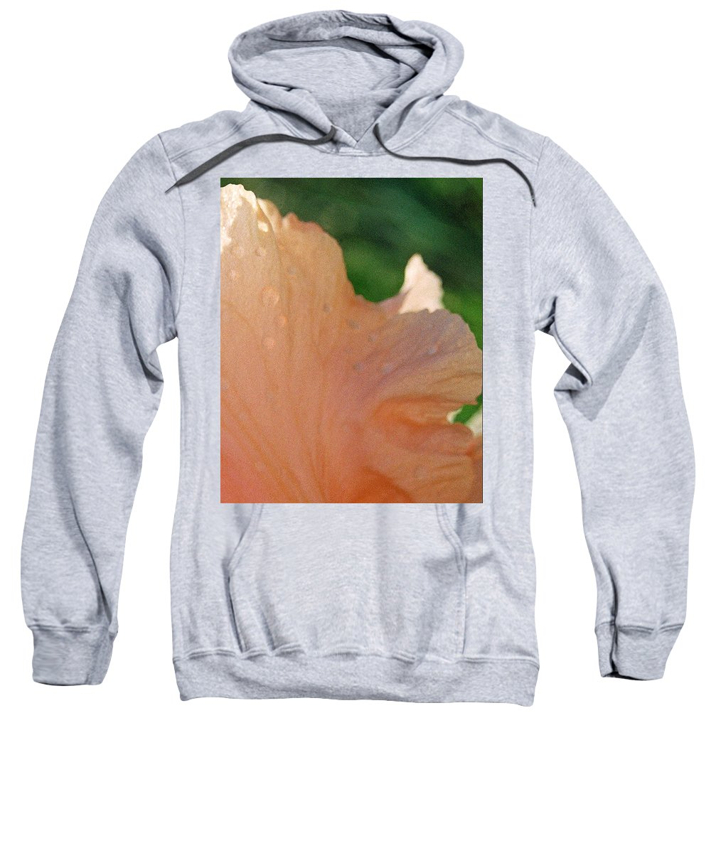 Abstract Sweatshirt featuring the photograph Panel Three From Iris by Steve Karol