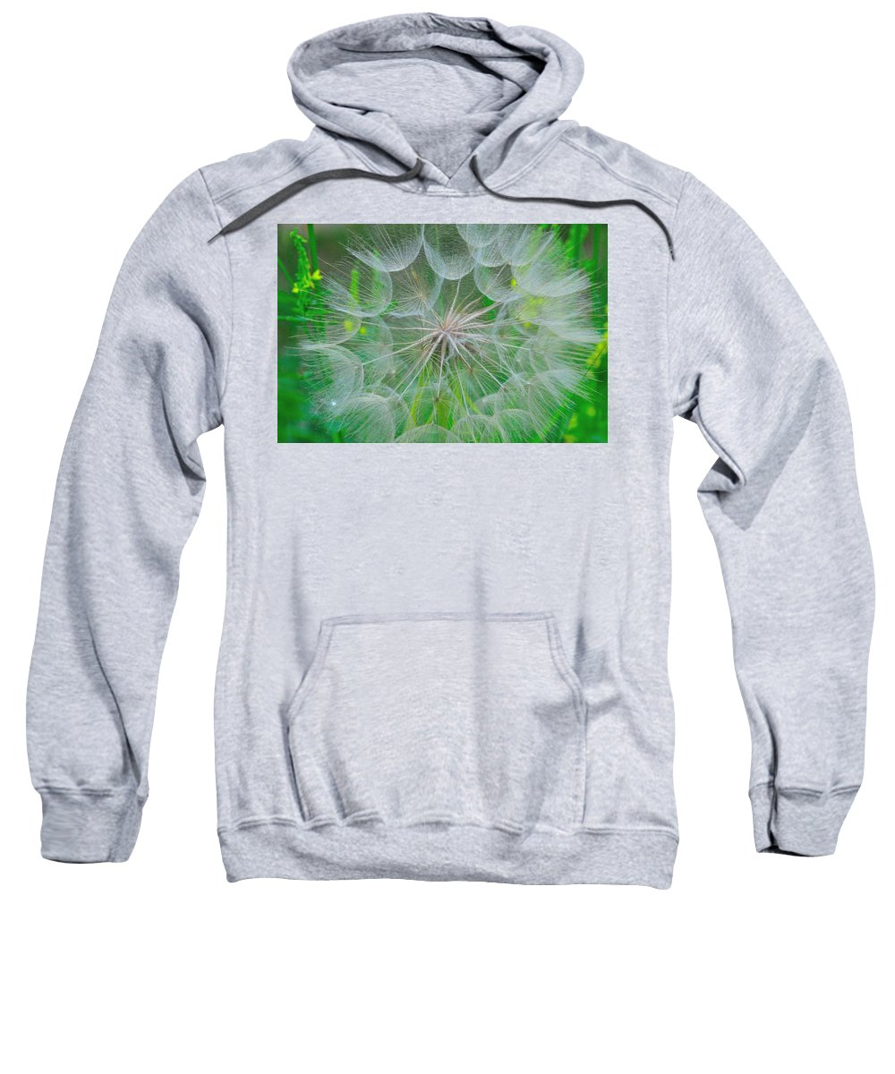 Dandelion Sweatshirt featuring the photograph Parachutes For Seeds by David Arment