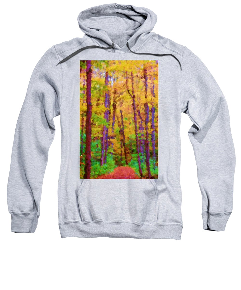 Digital Photograph Sweatshirt featuring the photograph Path In The Woods by David Lane