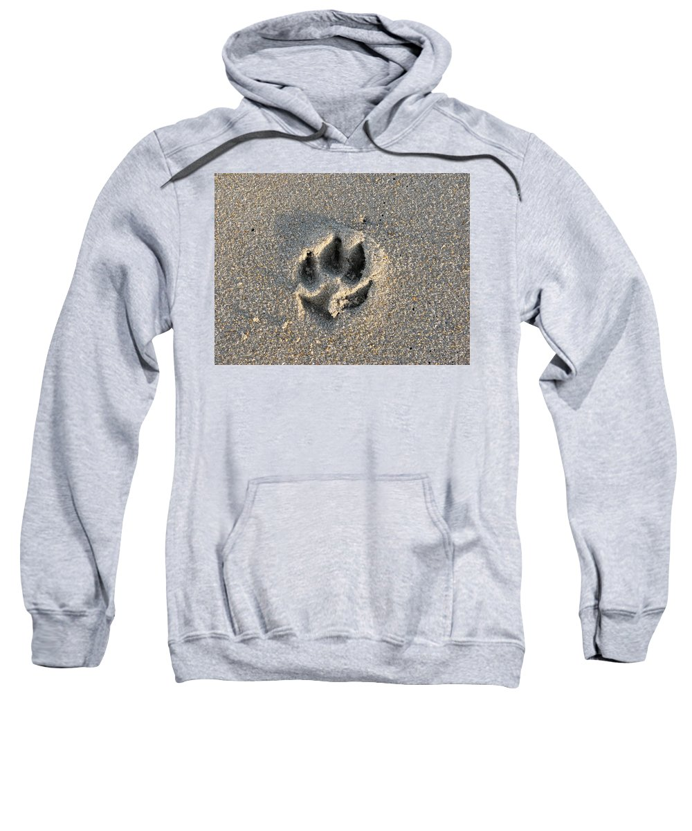 Dog Sweatshirt featuring the photograph Pawprint In The Sand by Stacey May