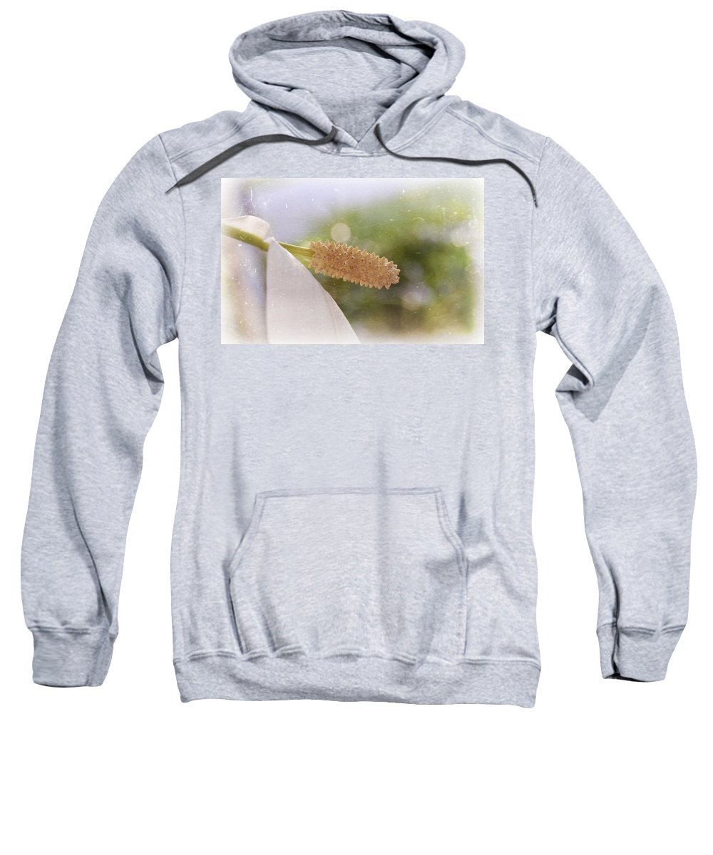 Peace Sweatshirt featuring the photograph Peace Lily by Amber Flowers
