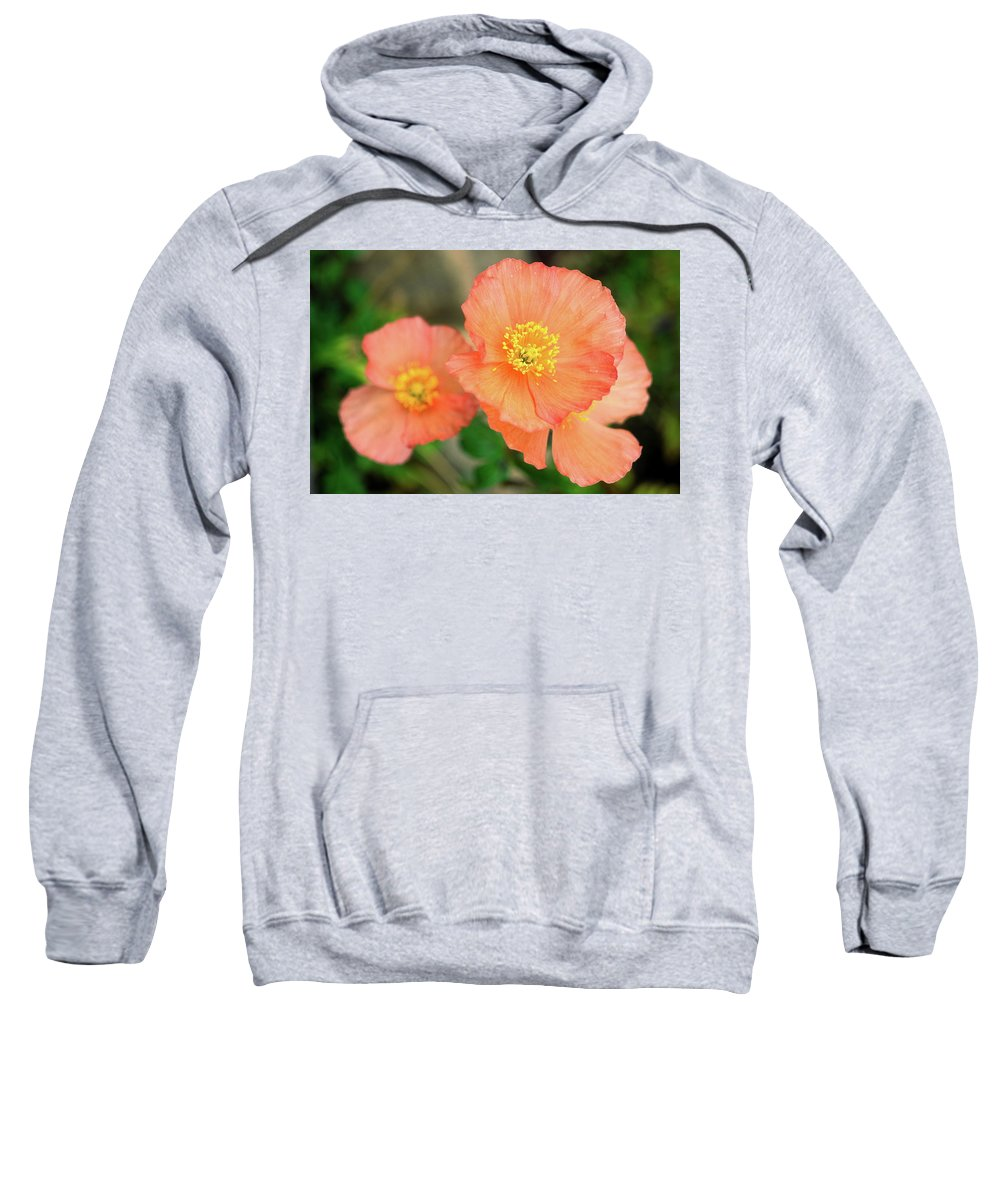 Peach Poppies Sweatshirt featuring the photograph Peach Poppies by Sally Weigand