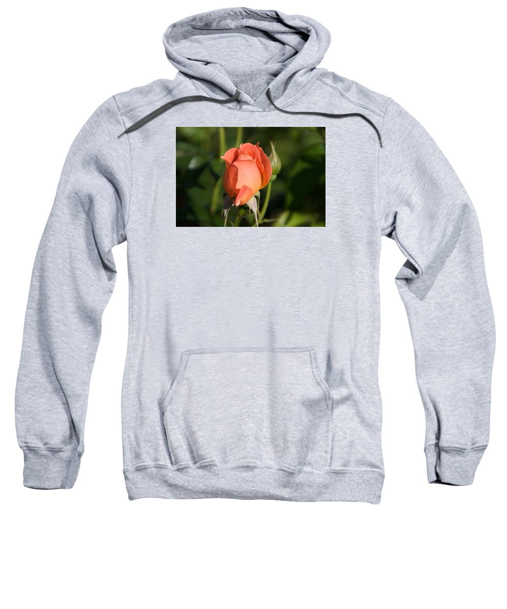 Rose Sweatshirt featuring the photograph Peach Rose by Toni Berry