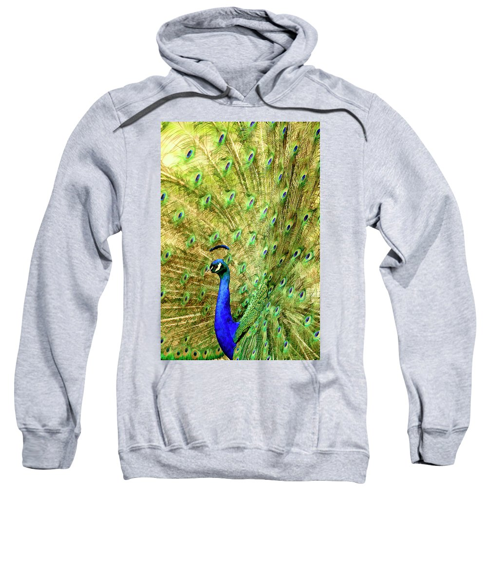 Current Sweatshirt featuring the mixed media Peacock Prancing by Geraldine Scull