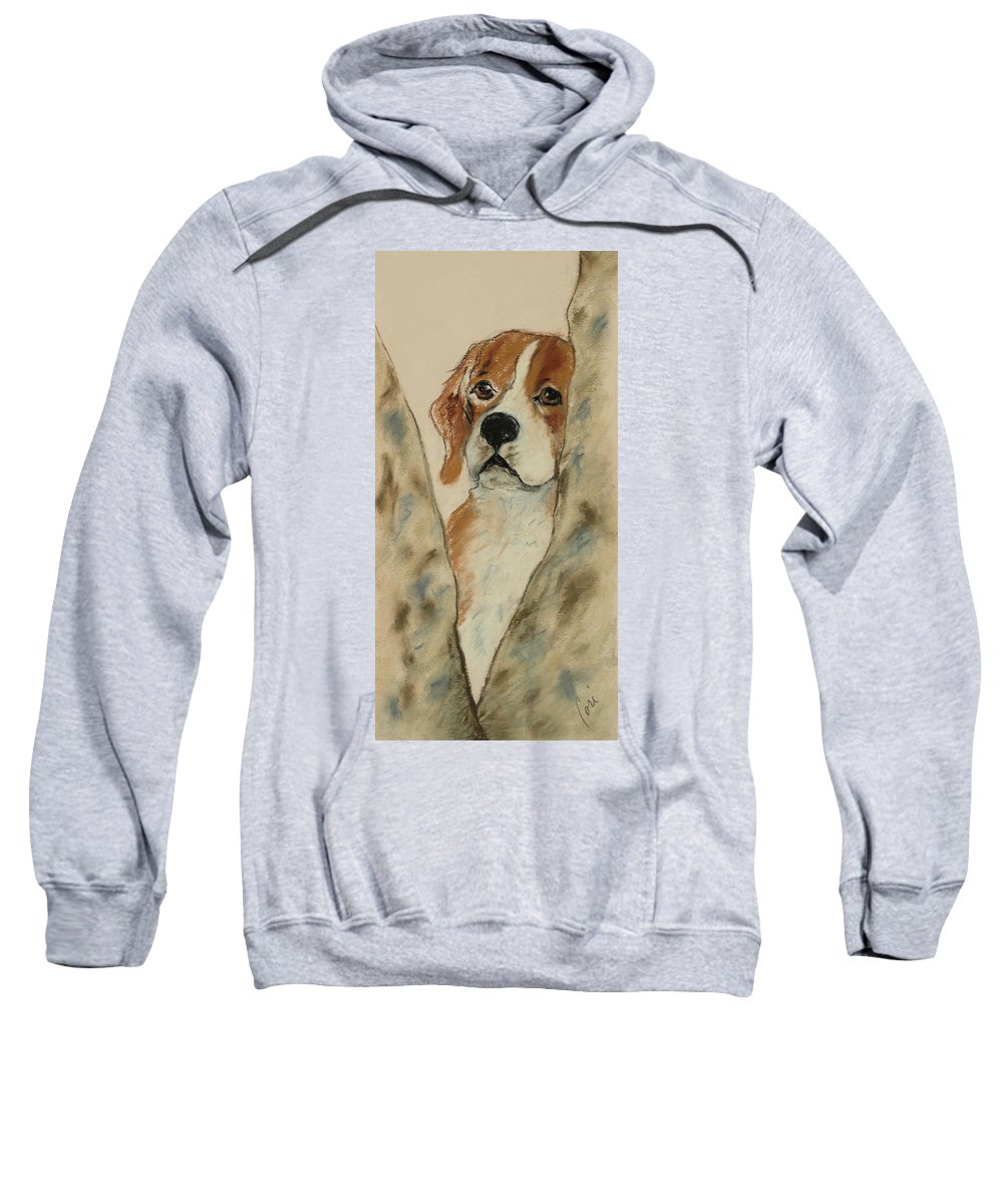 Beagle Sweatshirt featuring the drawing Peek A Boo by Cori Solomon