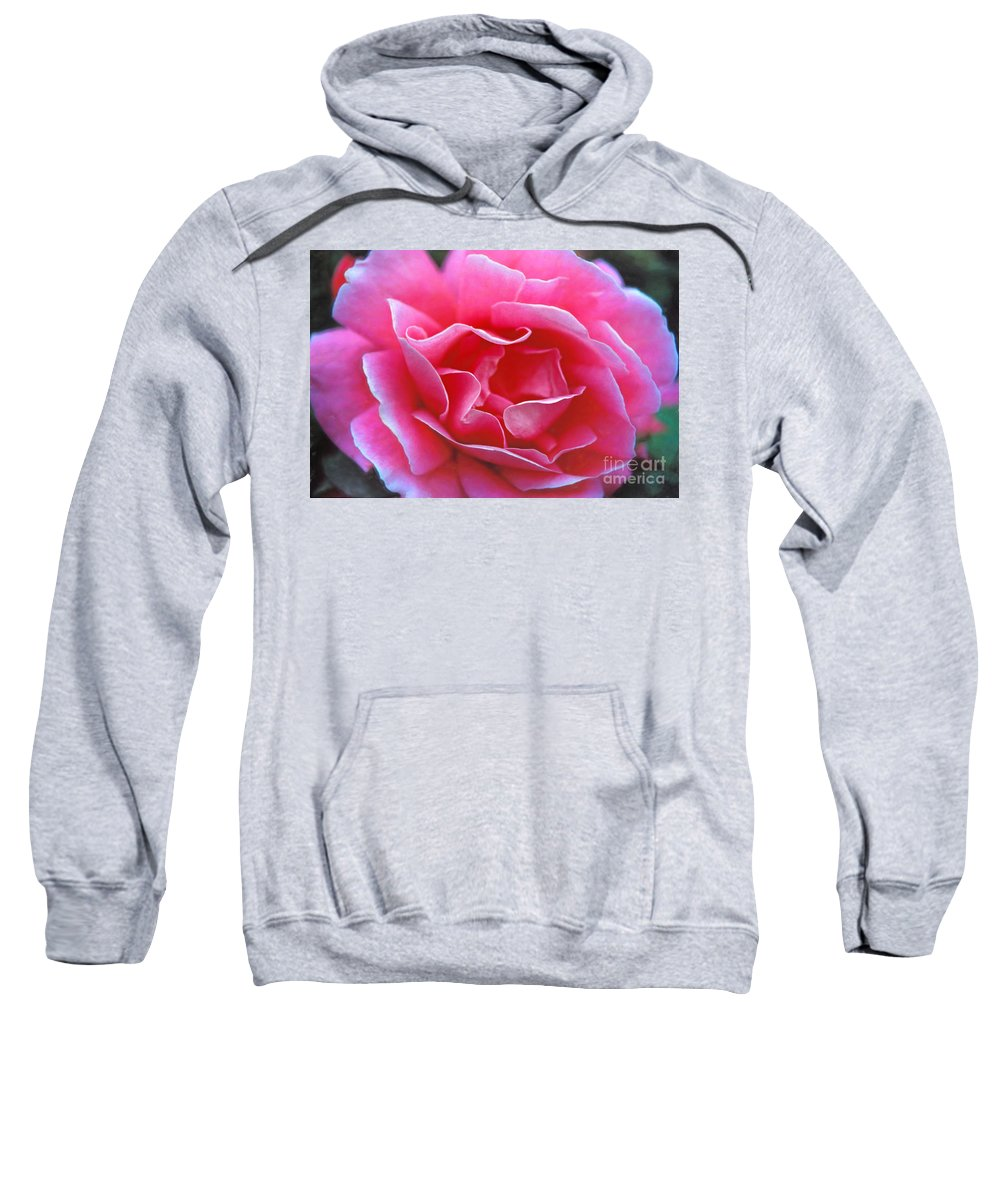 Peggy Lee Rose Sweatshirt featuring the photograph Peggy Lee Rose Bridal Pink by David Zanzinger