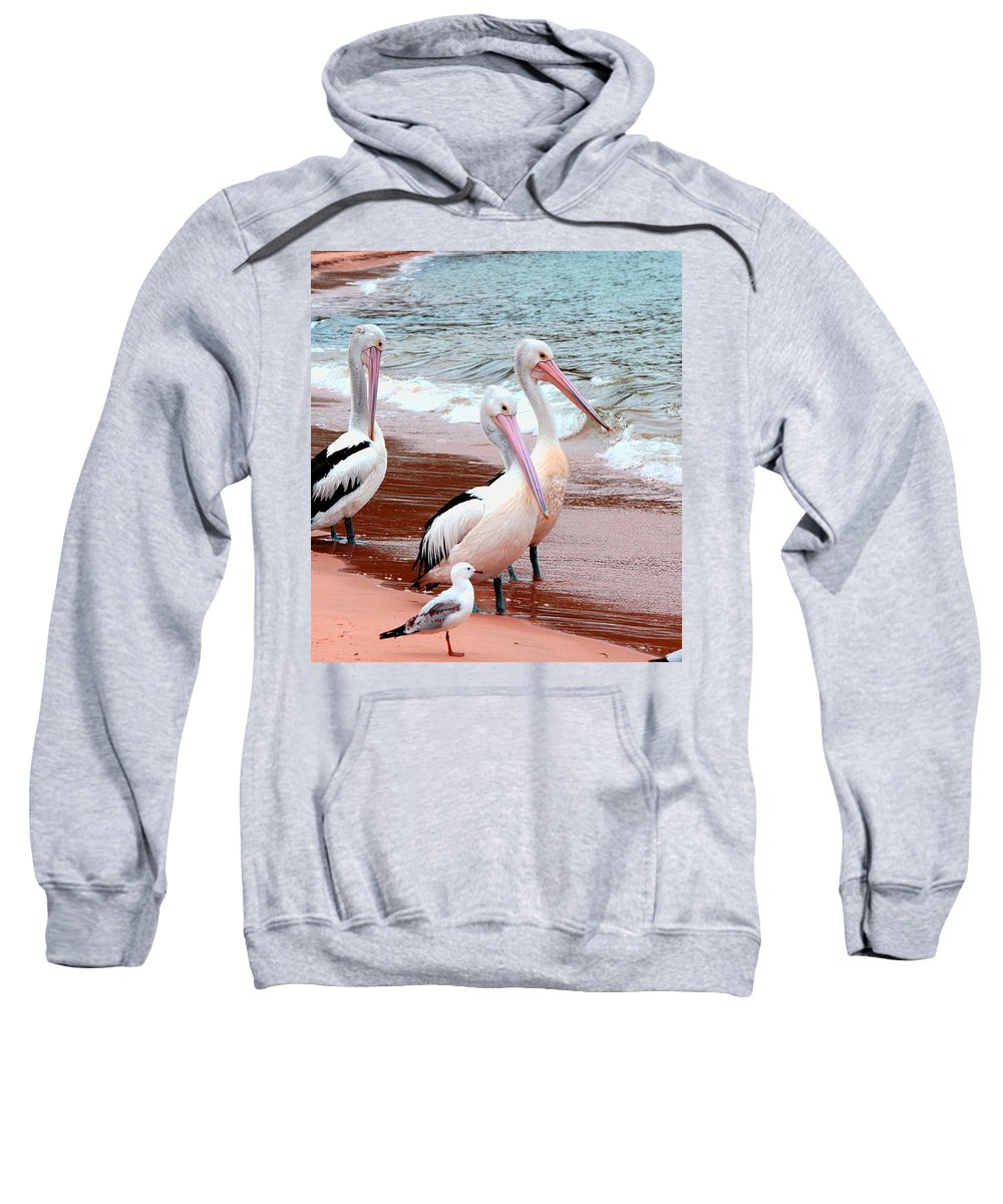 Australia Sweatshirt featuring the photograph Pelican 5.0 Pearl Beach by Giro Tavitian