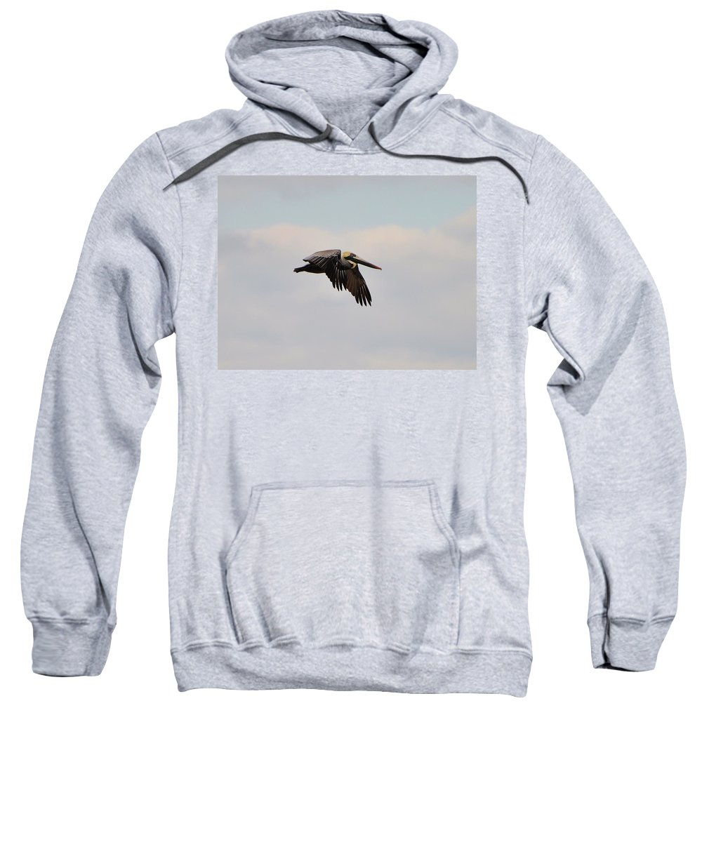 Nature Sweatshirt featuring the photograph Pelican Flight by Al Powell Photography USA