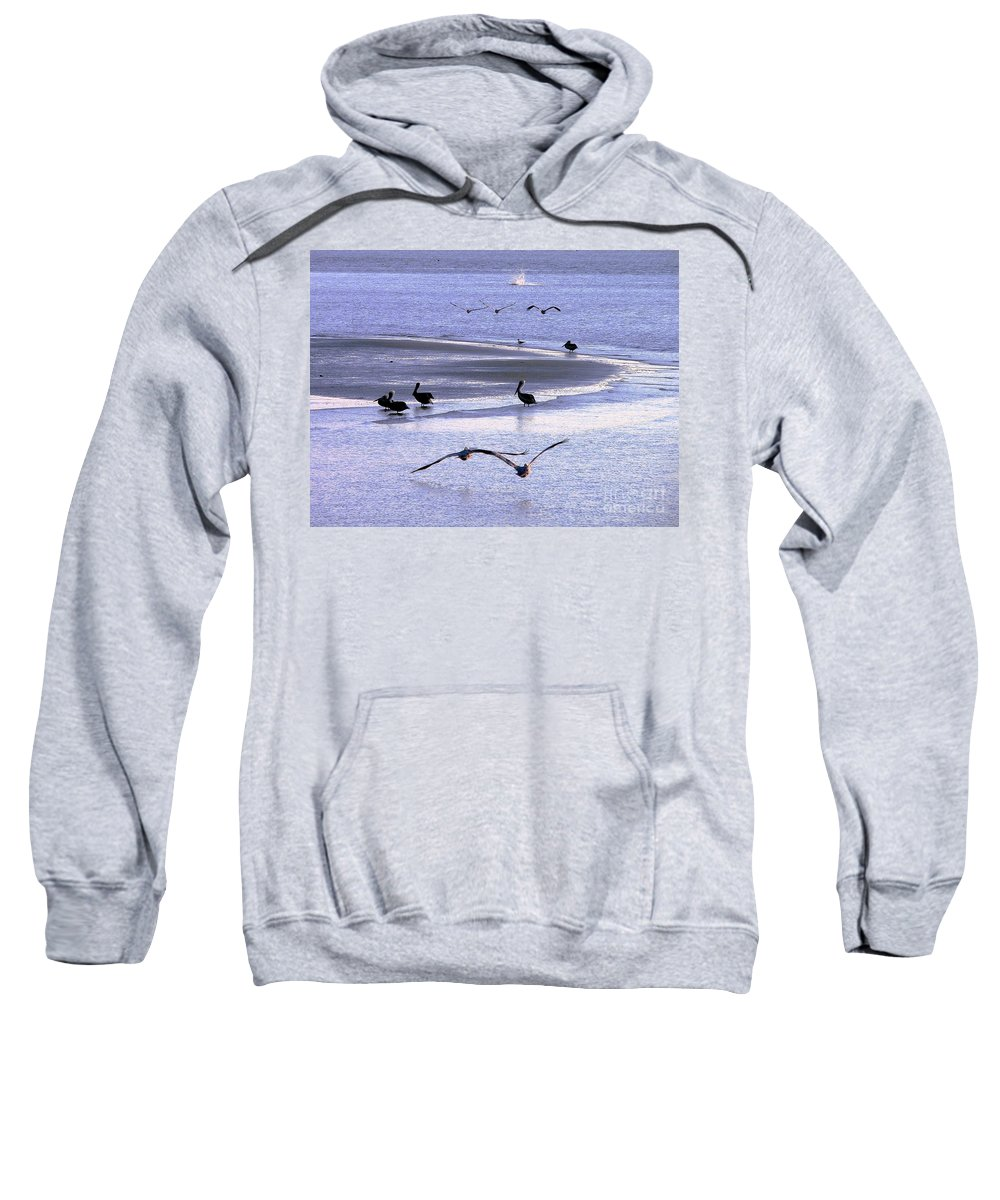 Nature Sweatshirt featuring the photograph Pelican Island by Al Powell Photography USA