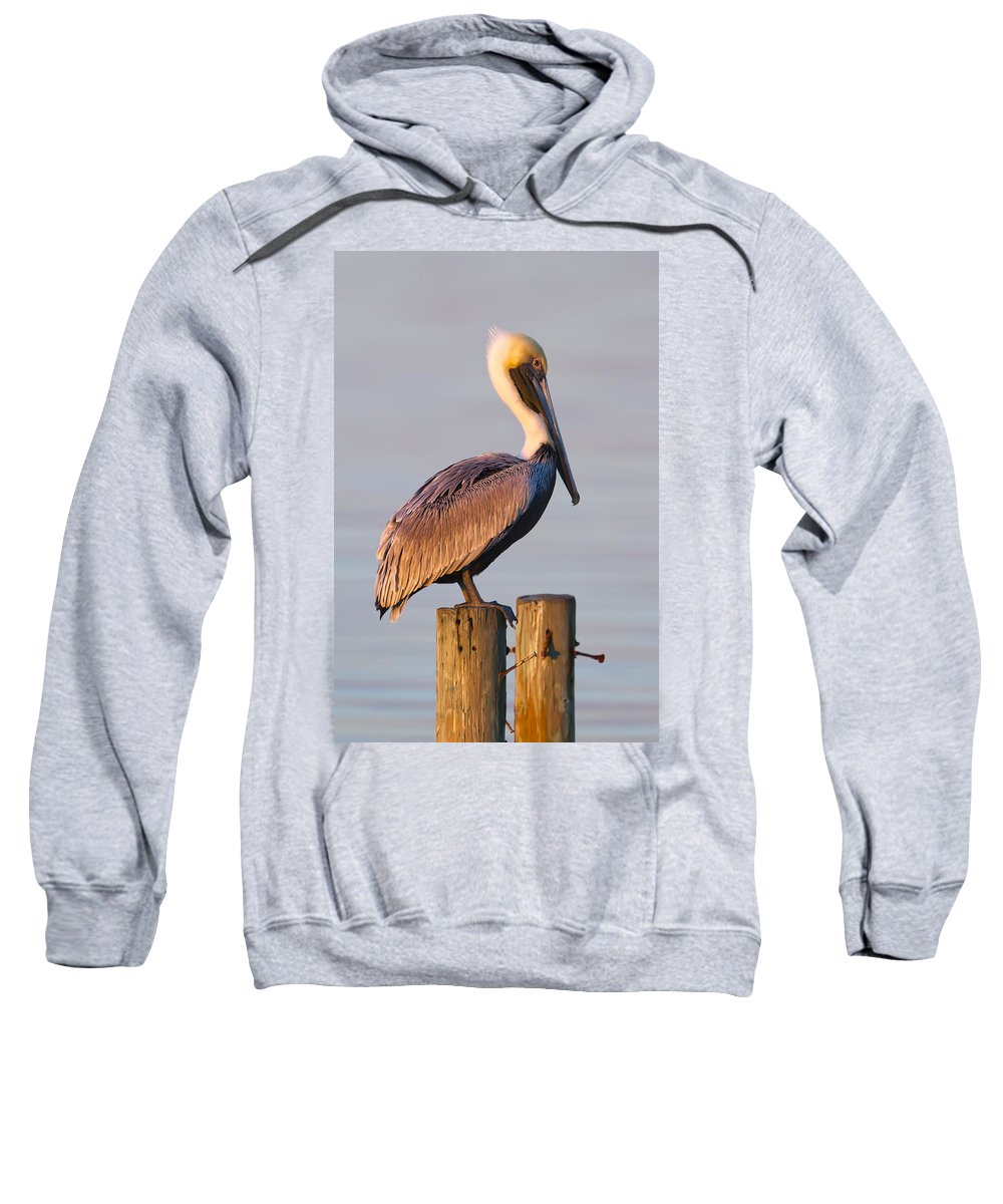 Pelican Sweatshirt featuring the photograph Pelican Perch by Janet Fikar