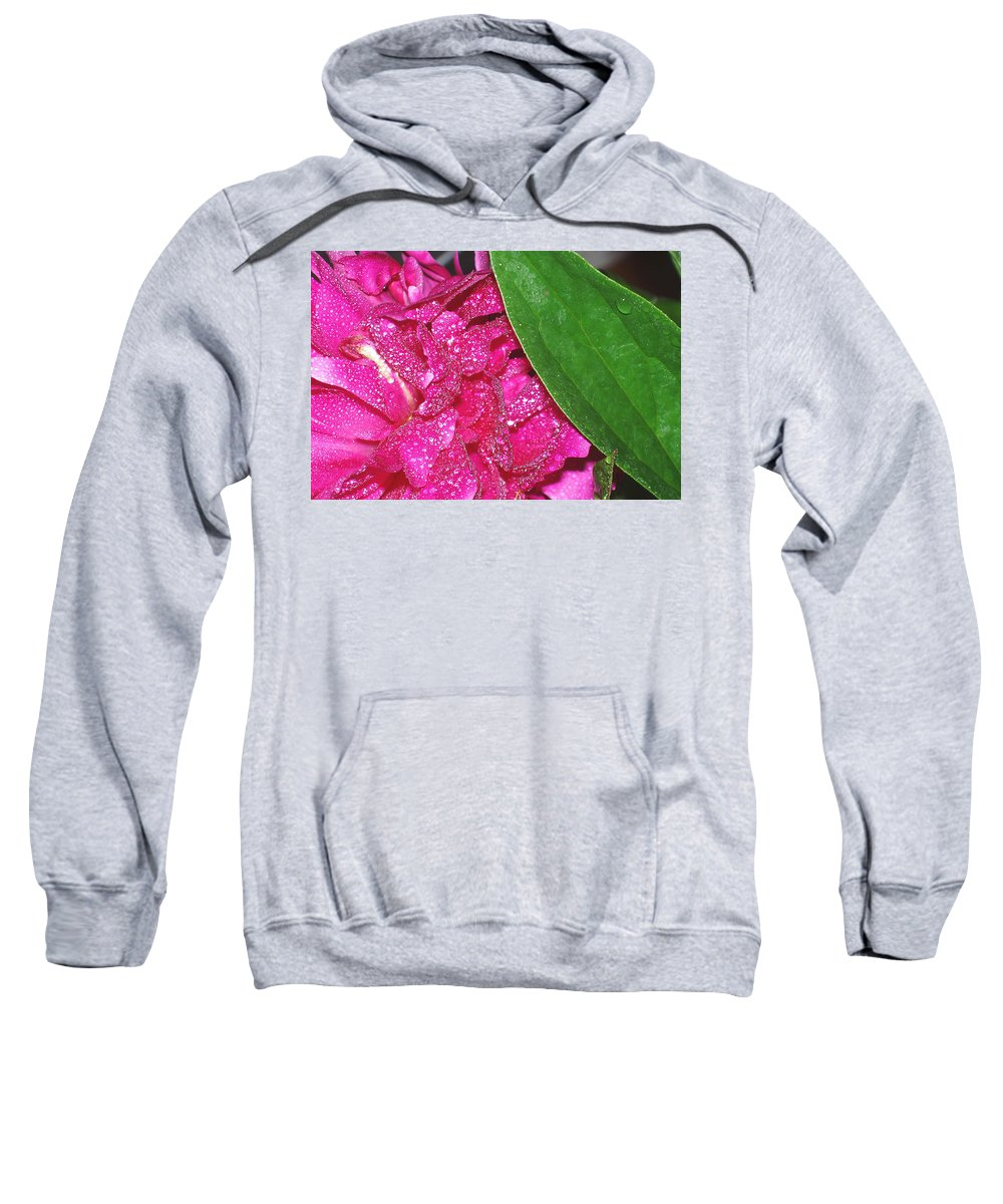 Peony Sweatshirt featuring the photograph Peony And Leaf by Nancy Mueller