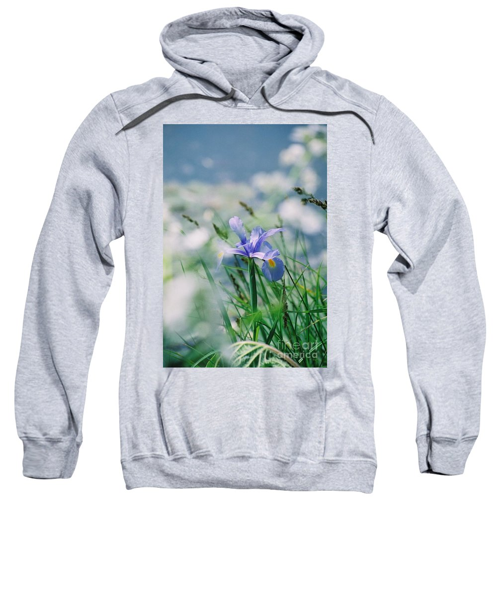 Periwinkle Sweatshirt featuring the photograph Periwinkle Iris by Nadine Rippelmeyer