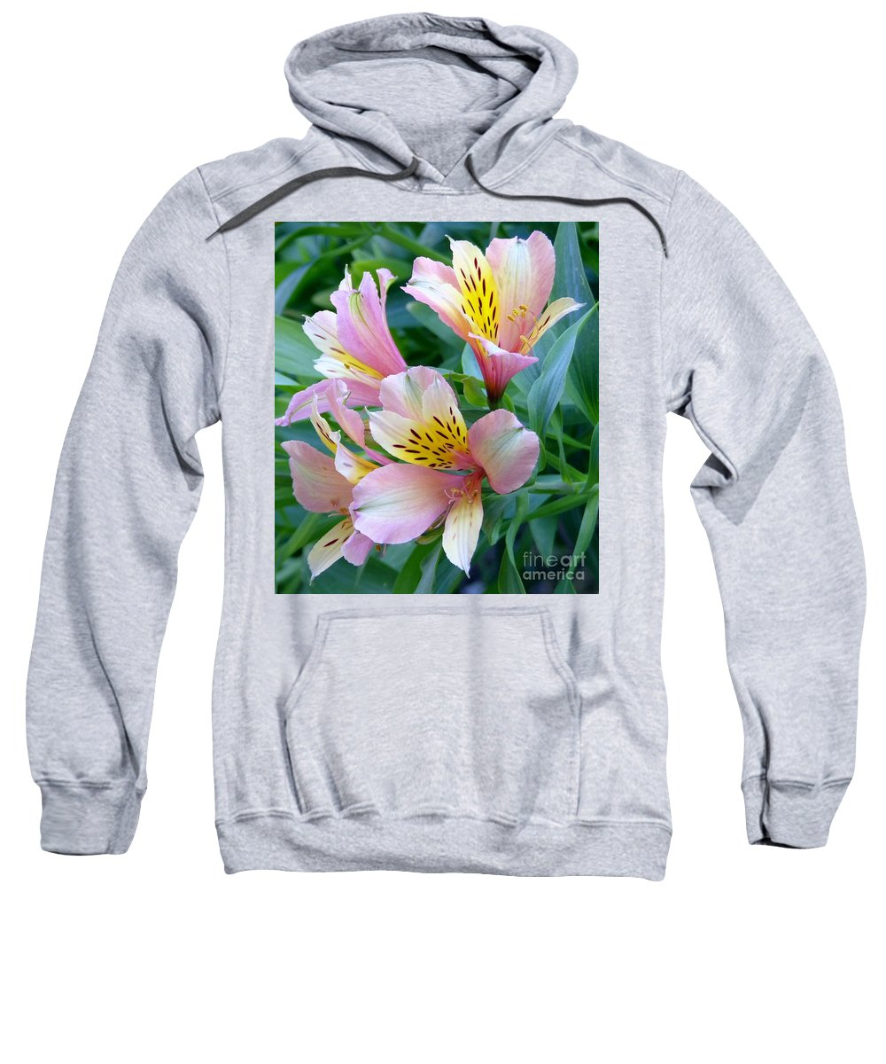 Astroemeria Sweatshirt featuring the photograph Peruvian Lily Of The Incas by Elizabeth Duggan