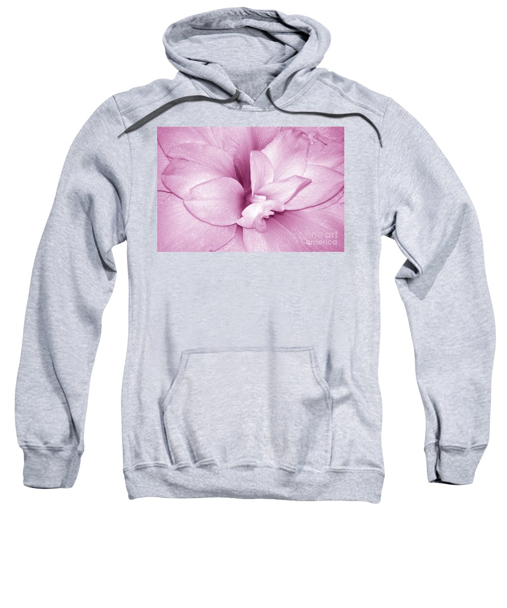 Amaryllis Sweatshirt featuring the photograph Petals In Pink by Lori Tambakis