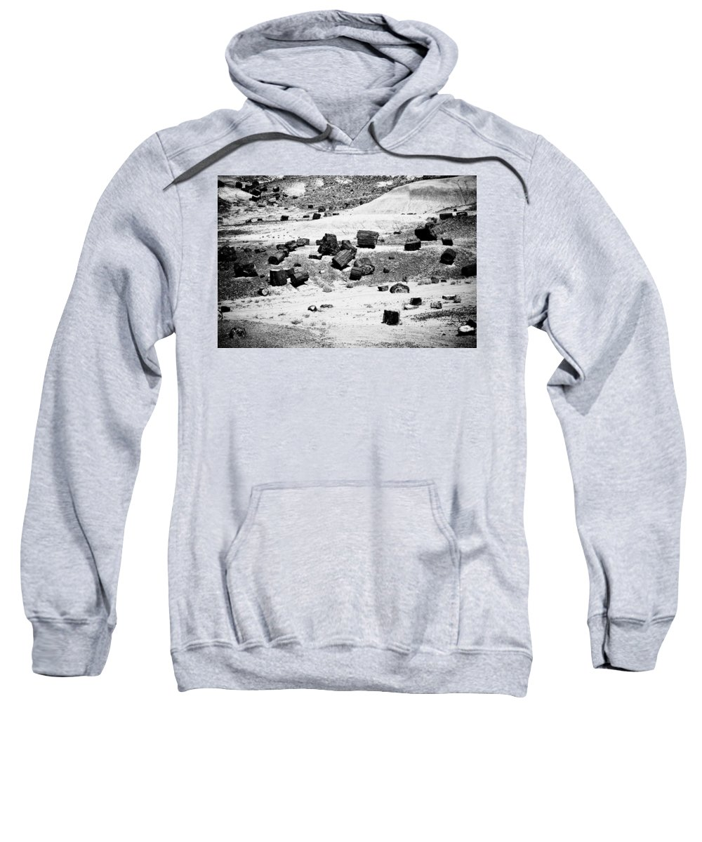 Petrified Forest Sweatshirt featuring the photograph Petrified Forest National Park #3 by Robert J Caputo