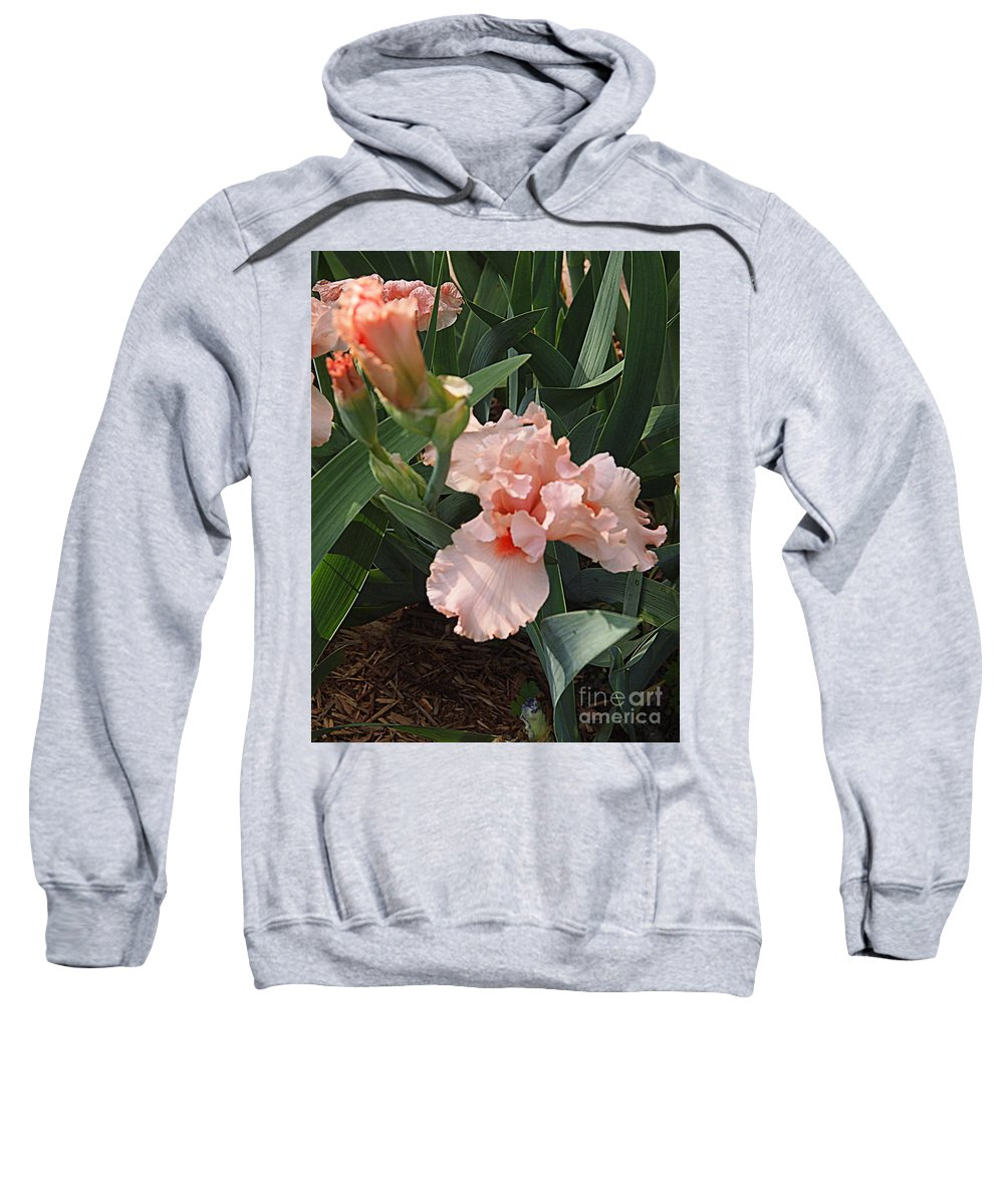 Photography Sweatshirt featuring the photograph Picture Peach by Nancy Kane Chapman