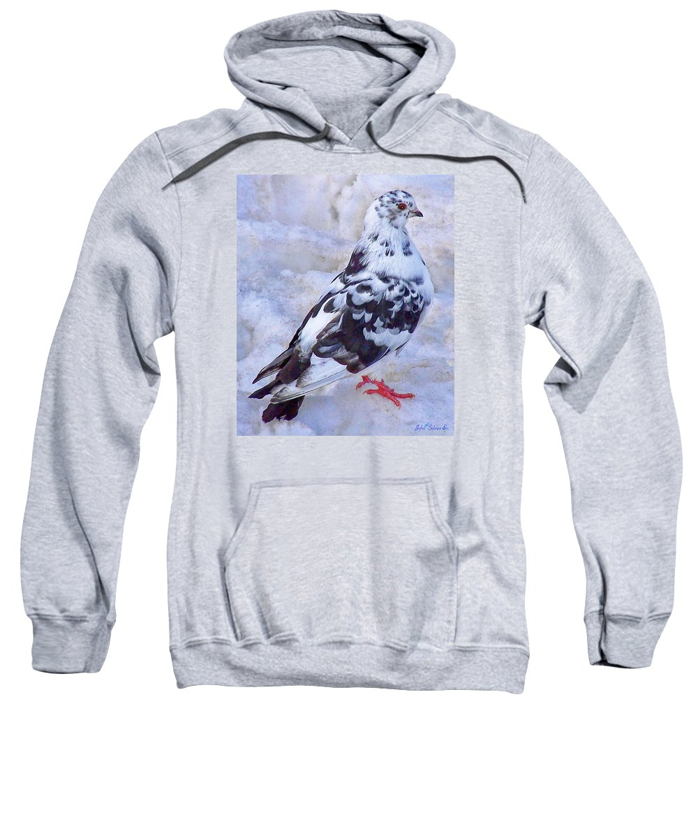 Pigeons Sweatshirt featuring the photograph Pigeon On Ice 1 by John Selmer Sr