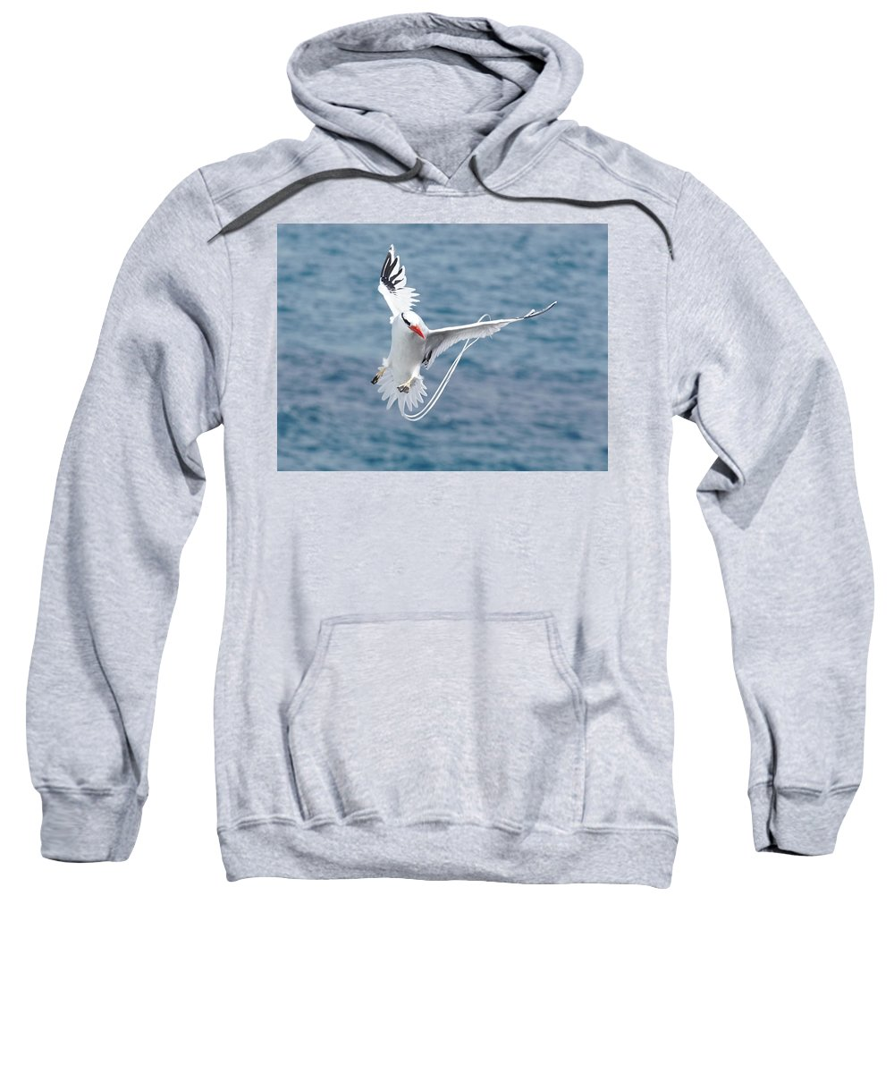 Sweatshirt featuring the photograph Pilots by Diego Paredes