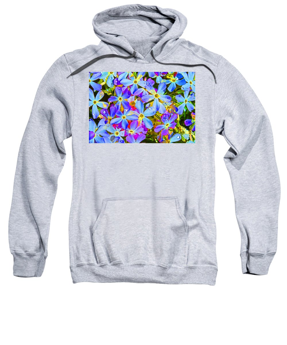 Wildflower Sweatshirt featuring the photograph Pincushion Flower by Heather Coen
