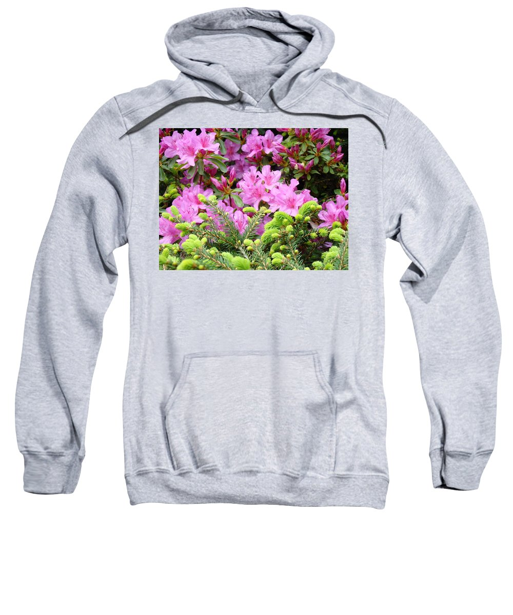 �azaleas Artwork� Sweatshirt featuring the photograph Pine Conifer Pink Azaleas 30 Summer Azalea Flowers Giclee Art Prints Baslee Troutman by Baslee Troutman