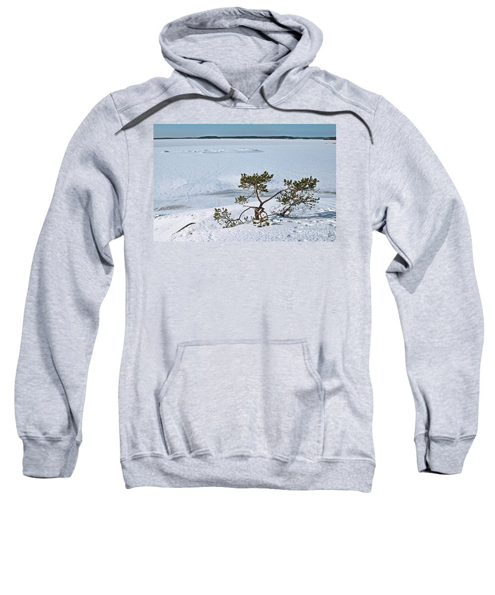 Winter Sweatshirt featuring the photograph Pine On A Rock by Esko Lindell