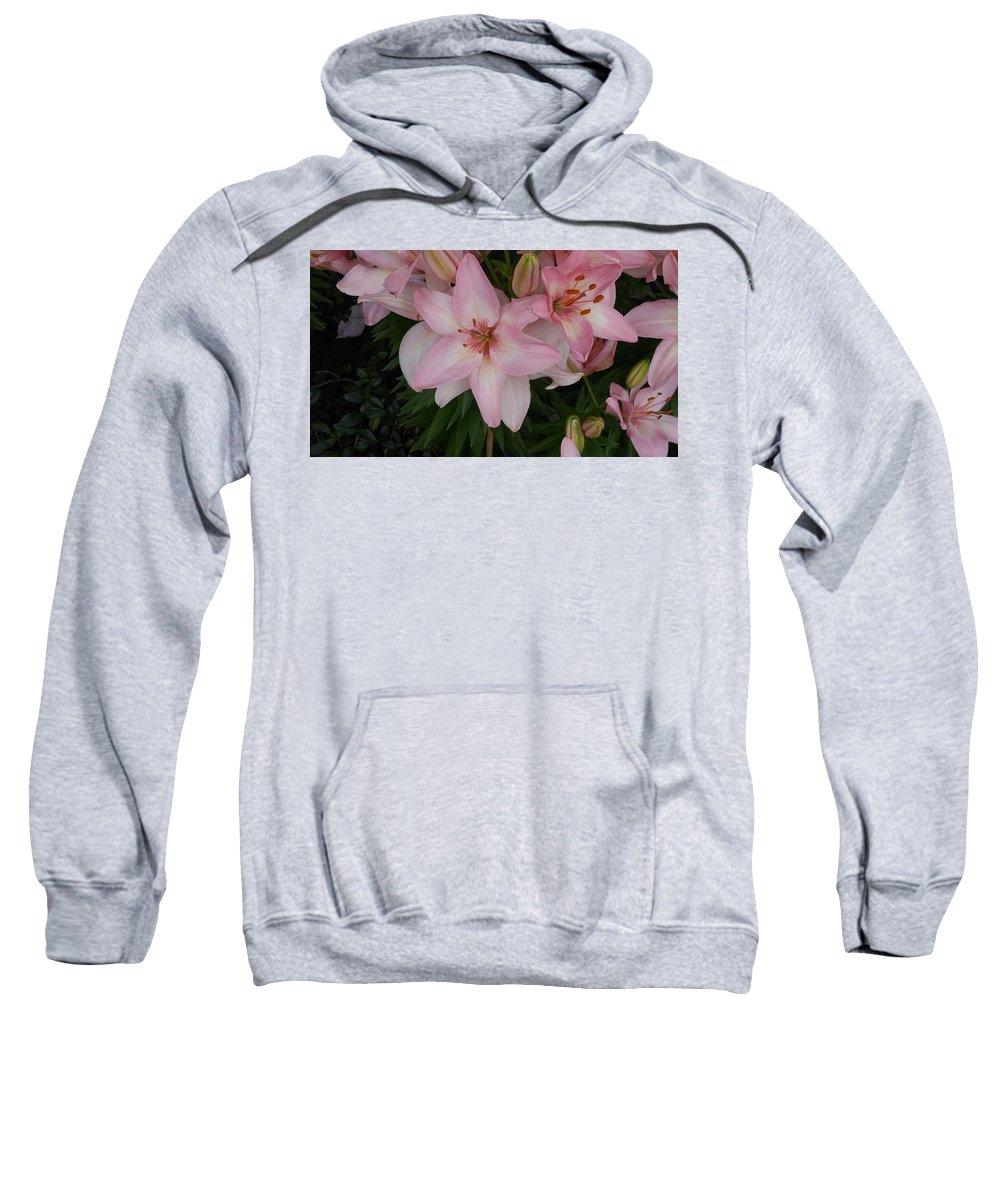 Pink Sweatshirt featuring the photograph Pink Asiatic Lilies 1 by Dawn Wells