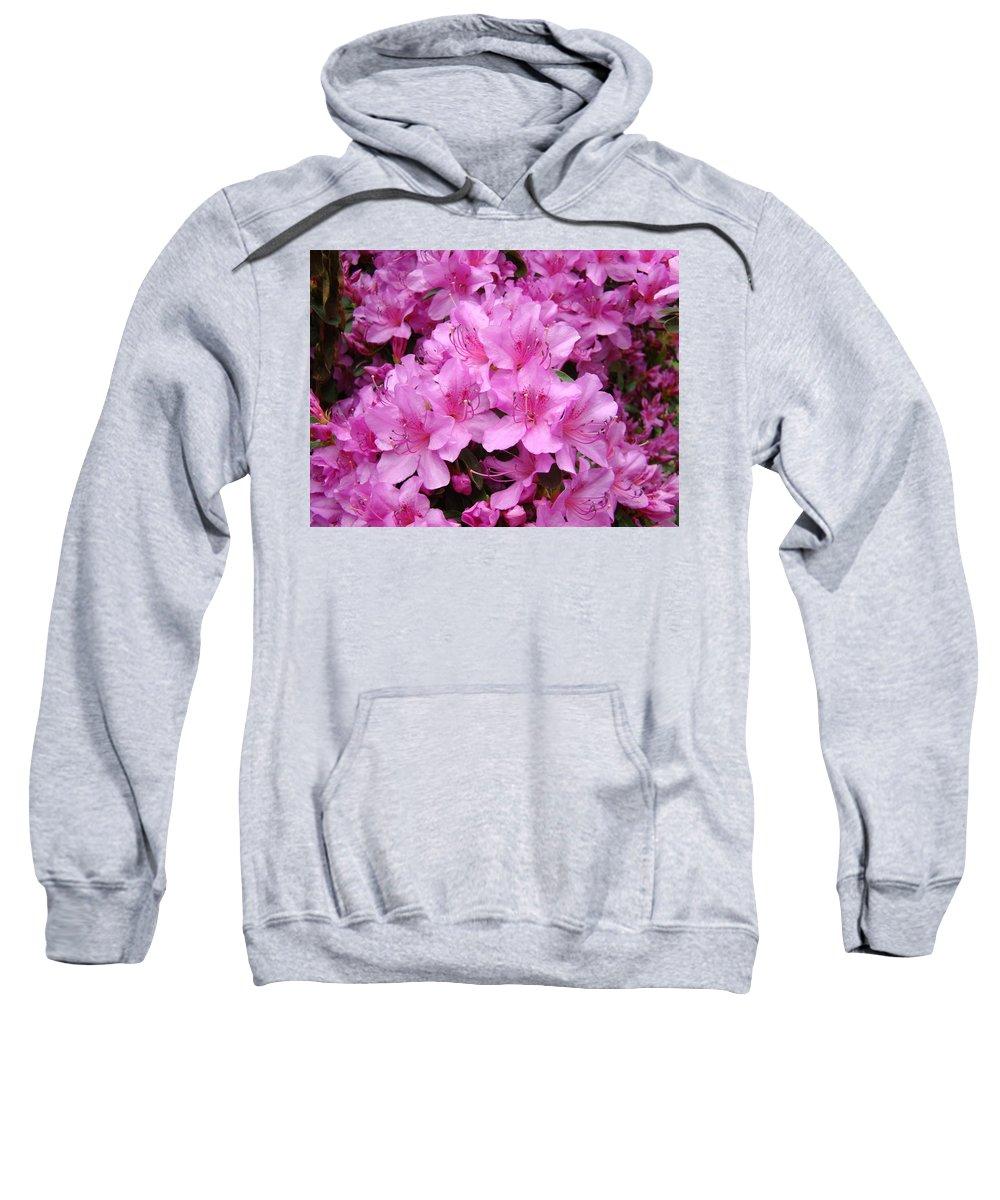 �azaleas Artwork� Sweatshirt featuring the photograph Pink Azaleas Summer Garden 6 Azalea Flowers Giclee Art Prints Baslee Troutman by Baslee Troutman