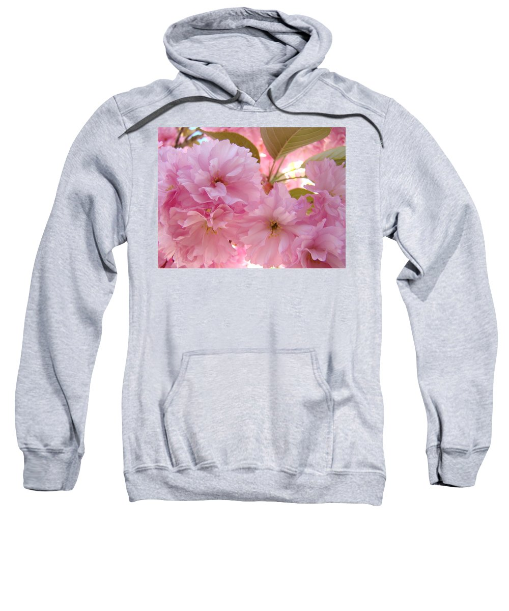 Blossom Sweatshirt featuring the photograph Pink Blossoms Art Prints Spring Tree Blossoms Baslee Troutman by Baslee Troutman