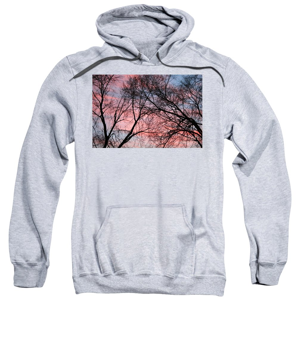 Blue Sky Sweatshirt featuring the photograph Pink Blue Sky by Julie Kindt