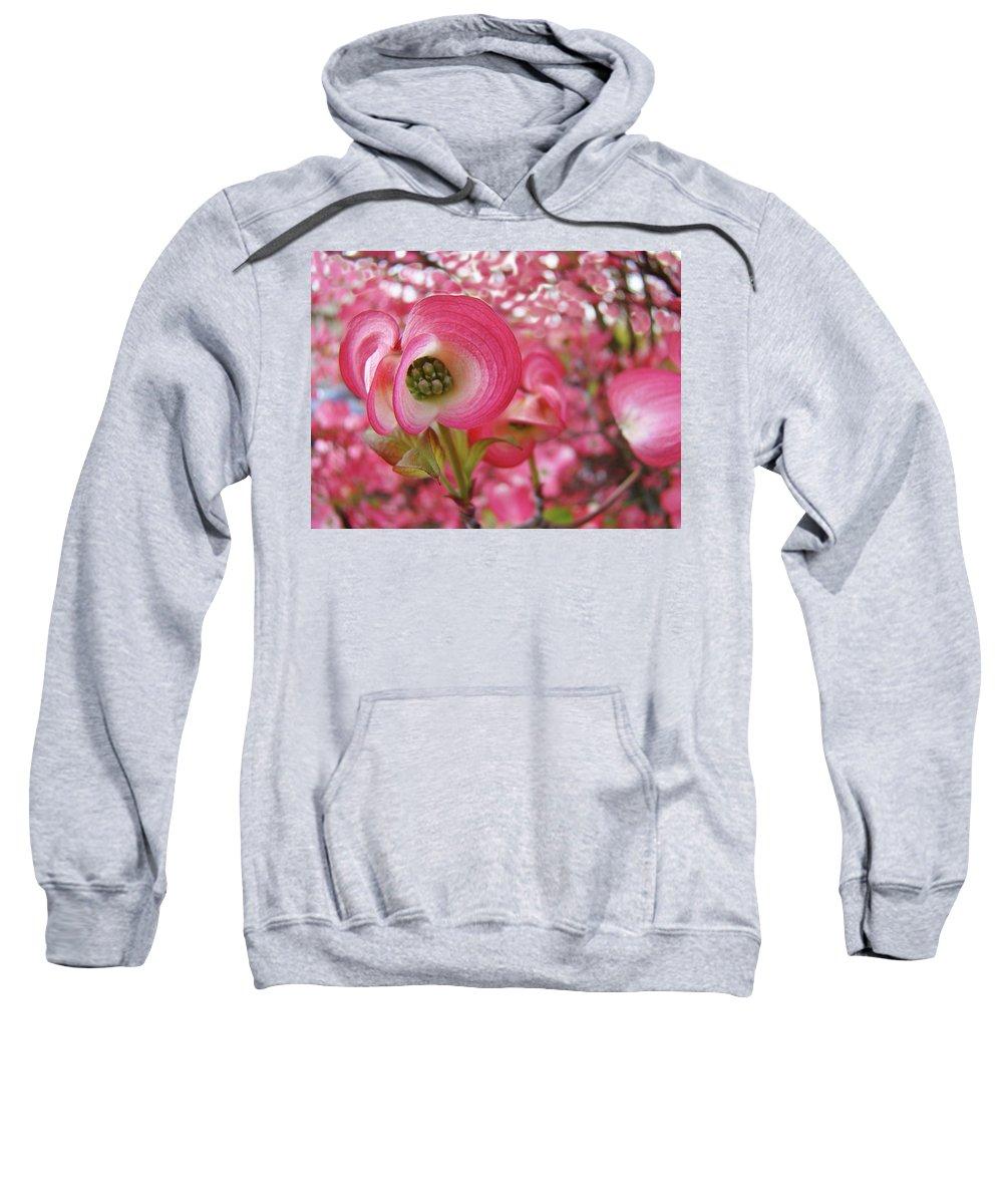 Dogwood Sweatshirt featuring the photograph Pink Dogwood Tree Flowers Dogwood Flowers Giclee Art Prints Baslee Troutman by Baslee Troutman