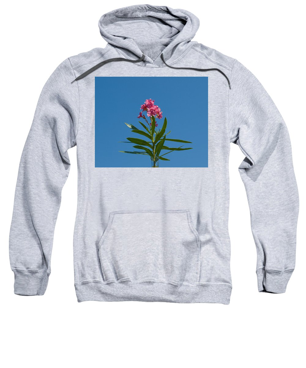 Florida; Indian; River; Melbourne; Nerium; Oleander; Red; Pink; Flower; Bush; Shrub; Poison; Poisono Sweatshirt featuring the photograph Pink Florida Oleander Blossom by Allan Hughes