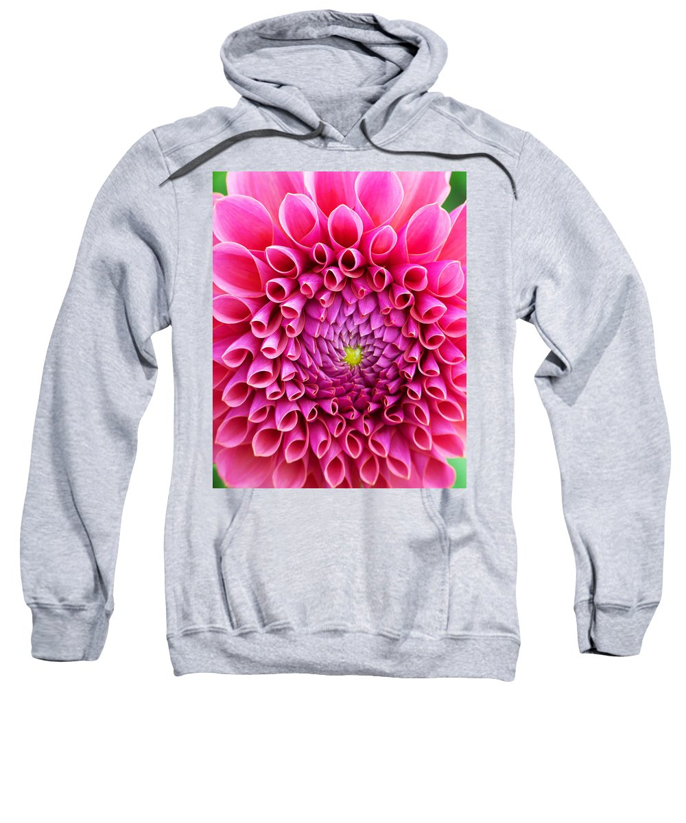 Flower Sweatshirt featuring the photograph Pink Flower Close Up by Anthony Jones