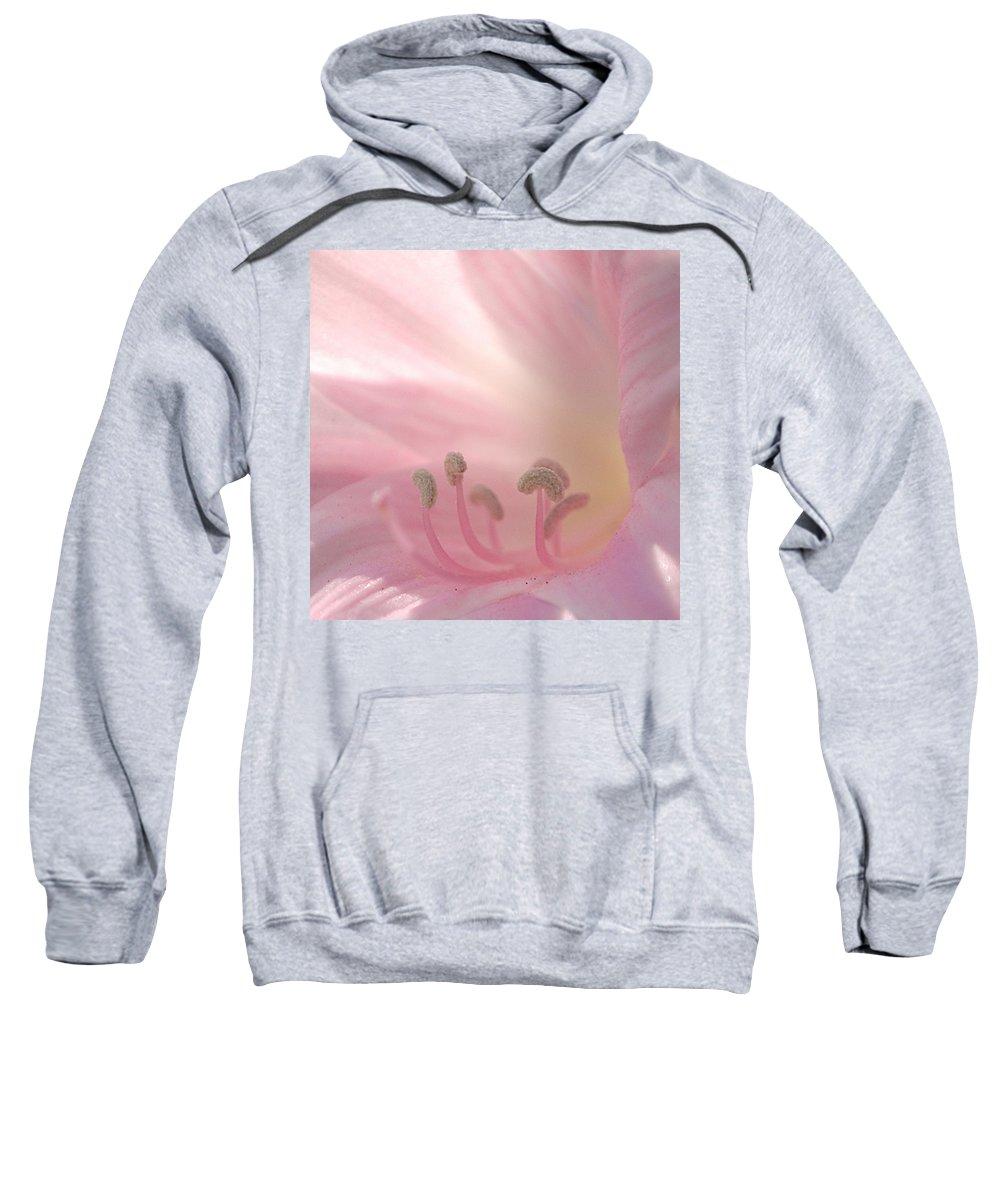 Flower Sweatshirt featuring the photograph Pink Flower by Jill Reger